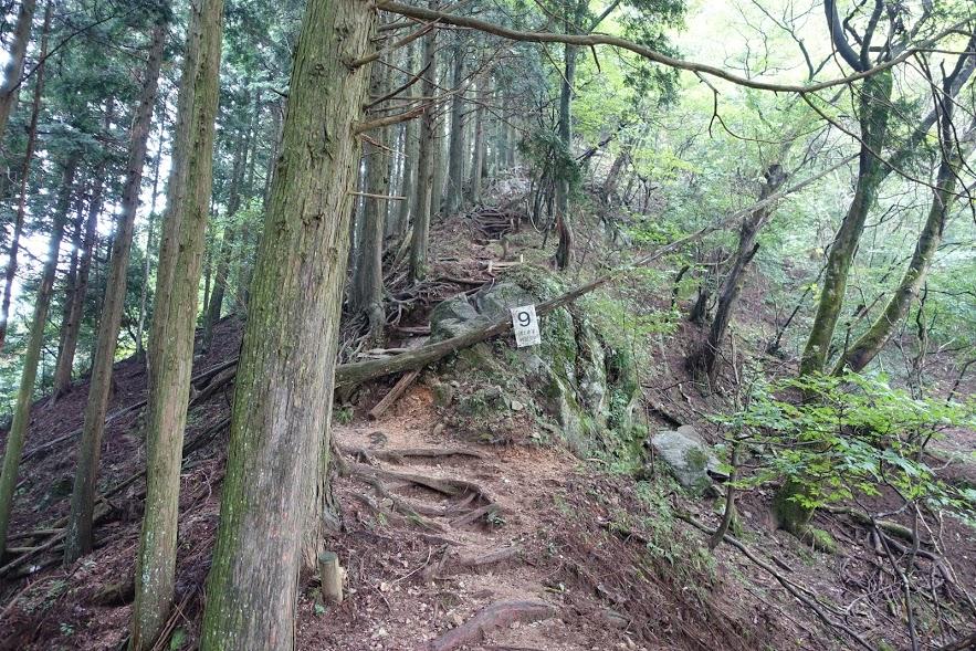 三重 錫杖ヶ岳 登山道