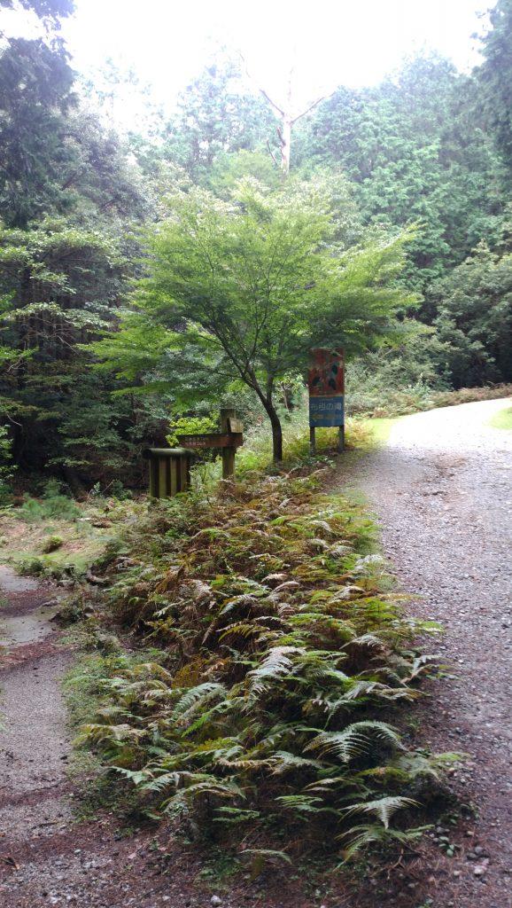三重 青山高原 登山道 左滝見台へ