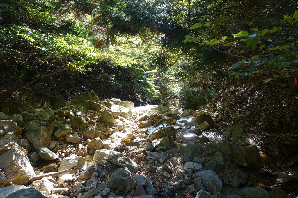 三重 仙ヶ岳 白谷道2