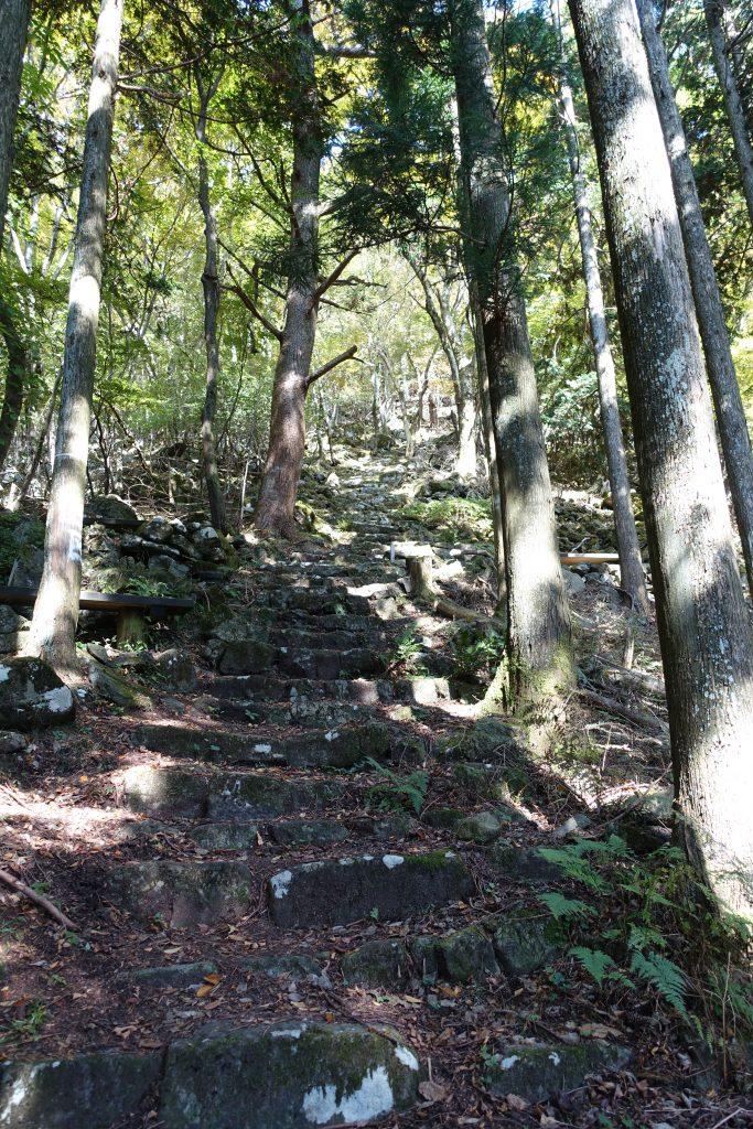 三重 大洞山 登山道急階段