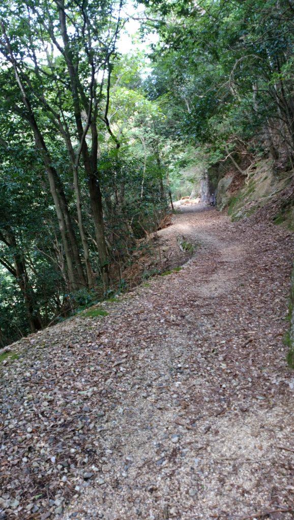 三重 仙ヶ岳 石谷川沿いの林道
