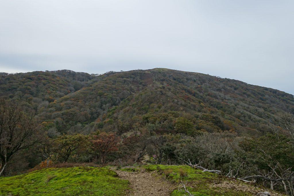 三重御池岳 鞍掛方面から鈴北岳の展望
