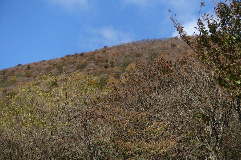 三重 高見山展望台から見上げる