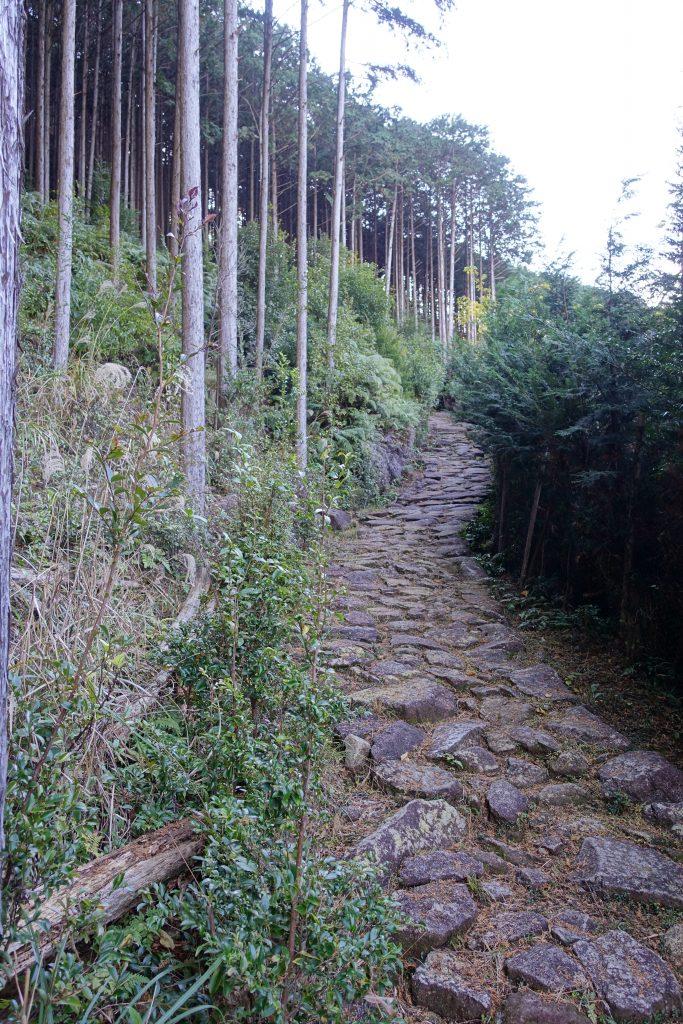 三重 八鬼山越え 熊野古道01