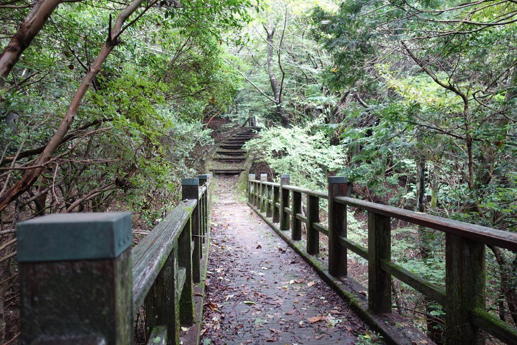 三重 青山高原 山頂の公園の歩道