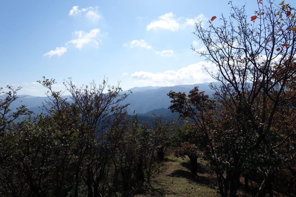 三重 高見山 展望台から山頂への登山道
