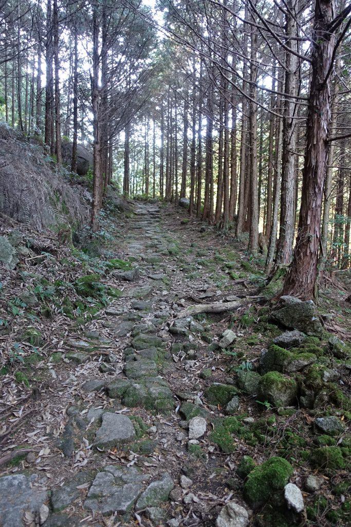 三重 八鬼山越え 熊野古道02