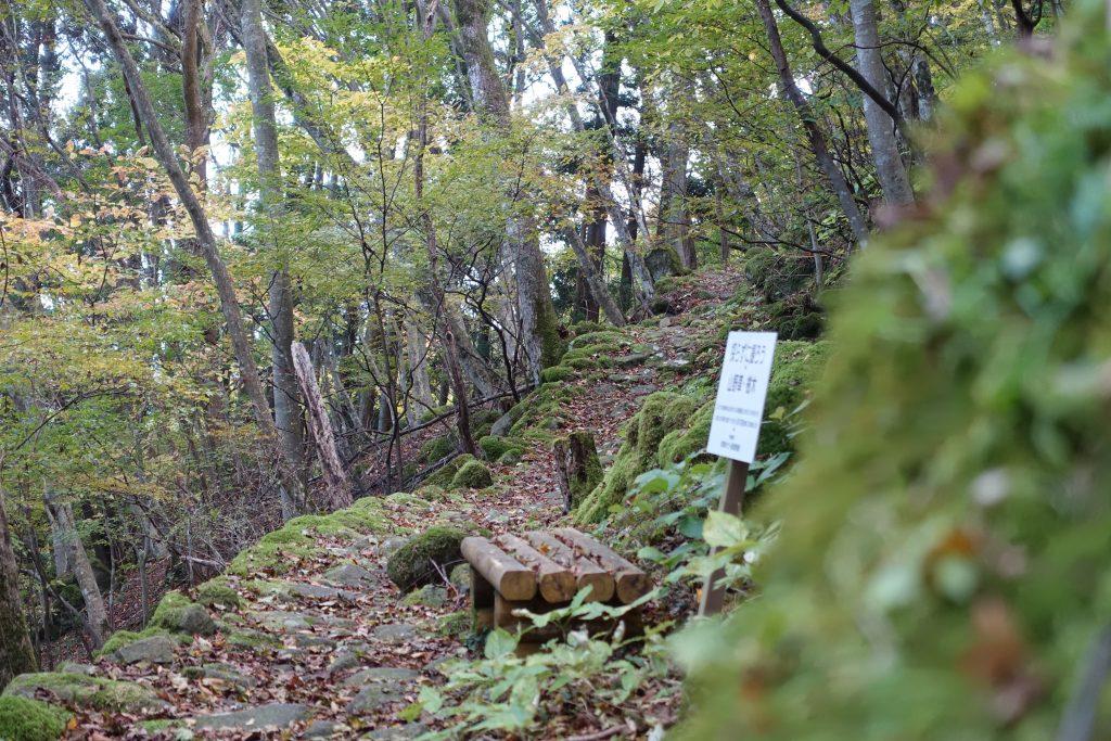 三重 大洞山 東海自然歩道石畳の道04