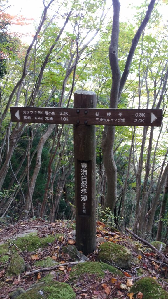 三重 大洞山 東海自然歩道石畳の道05
