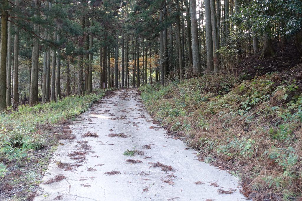 三重 経ヶ峰 笹子谷ルート舗装林道