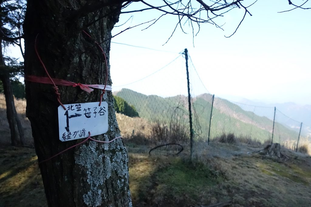 三重 経ヶ峰 笹子谷ルート 分岐部