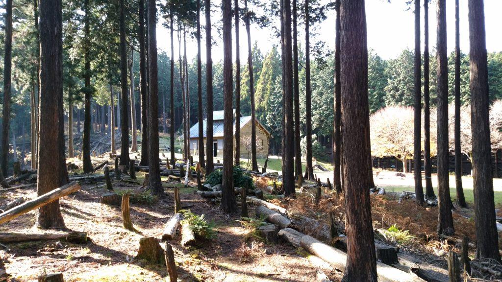 三重 経ヶ峰 笹子谷ルートから山頂避難小屋を