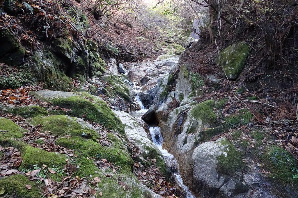 三重 経ヶ峰 笹子谷ルート雨量計奥の沢