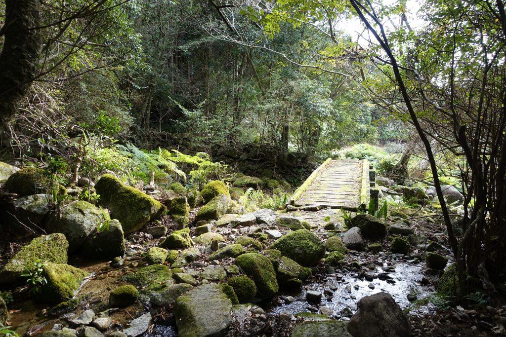 三重八鬼山江戸道 苔むした木の橋