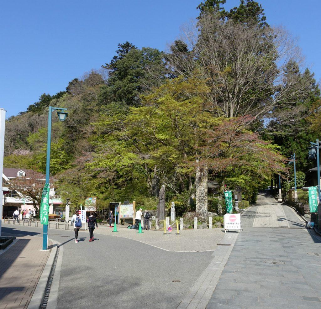高尾山 登山道 右1号路 左6号路と稲荷山ルート方面へ