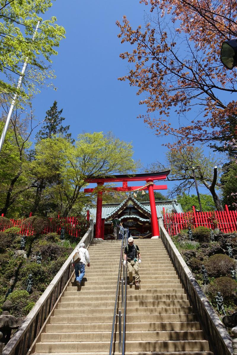 東京高尾山 薬王院 権現堂への上り階段