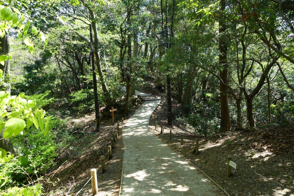 高尾山一号路 舗装されている登山道