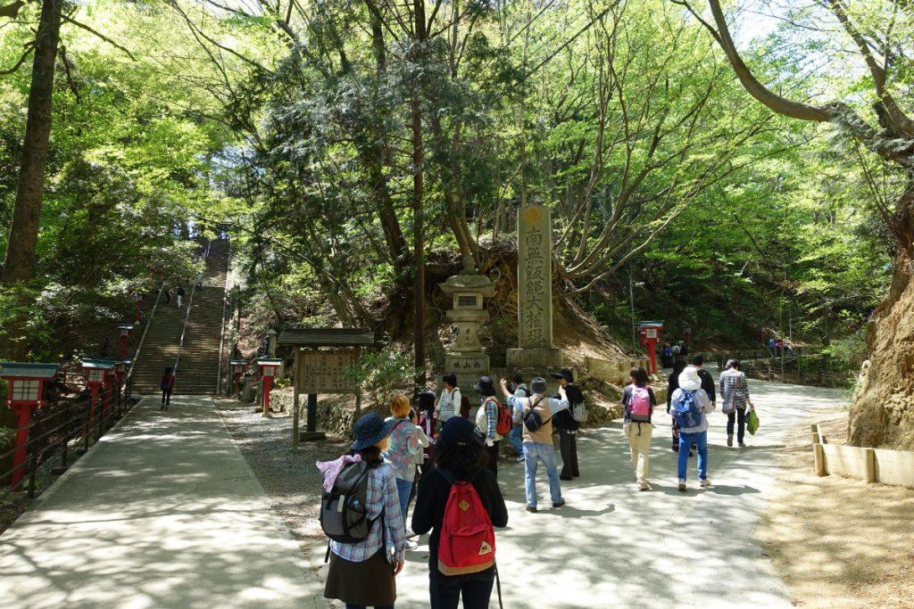 東京高尾山一号路 下から男坂を眺める