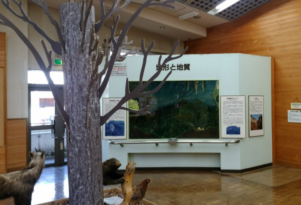東京奥多摩ビジターセンター内展示
