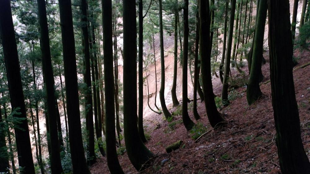 三重藤原岳大貝戸道 崩落した谷