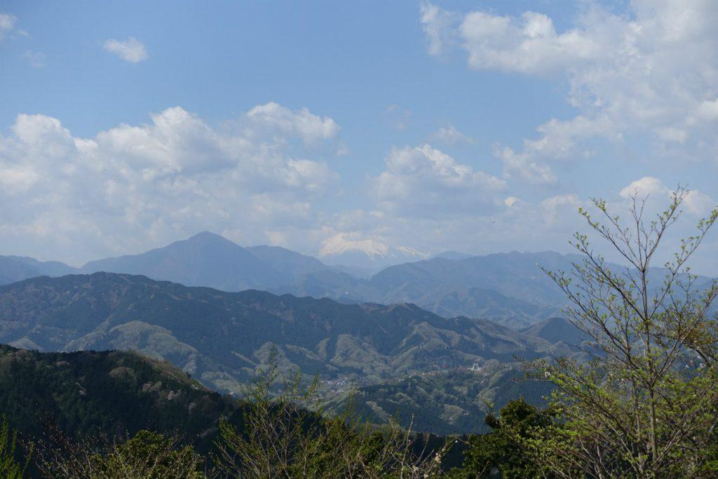 東京高尾山稲から富士山の眺め