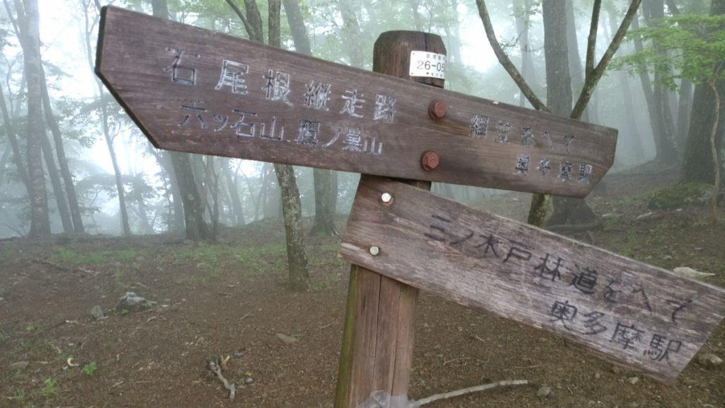 東京 六ツ石山山頂から奥多摩駅へ下山途中の分岐
