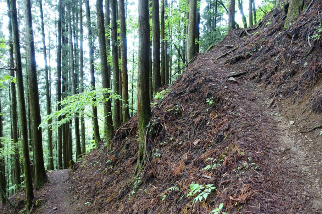 東京 六ツ石山 水根沢ルート後半 つづら折りの急斜面