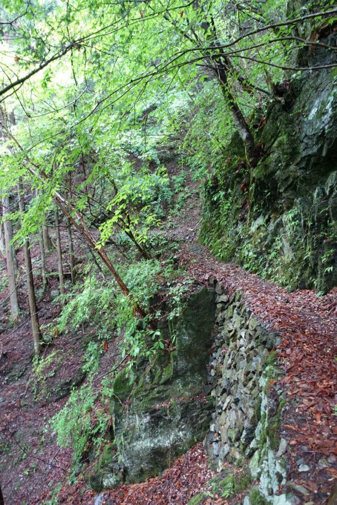 東京 六ツ石山 水根沢ルート 左側に沢音