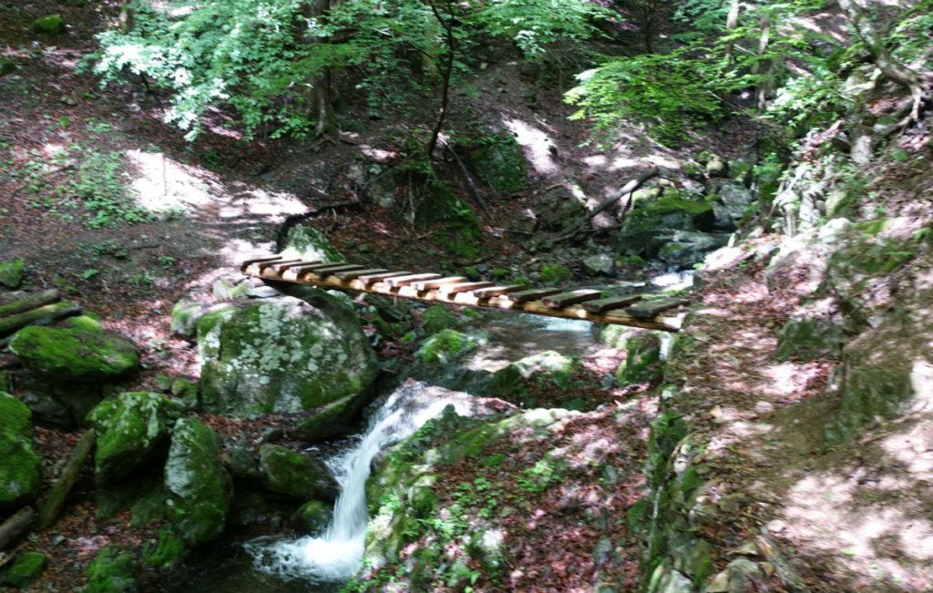 東京 六ツ石山 水根沢ルート 左岸から右岸へ渡る