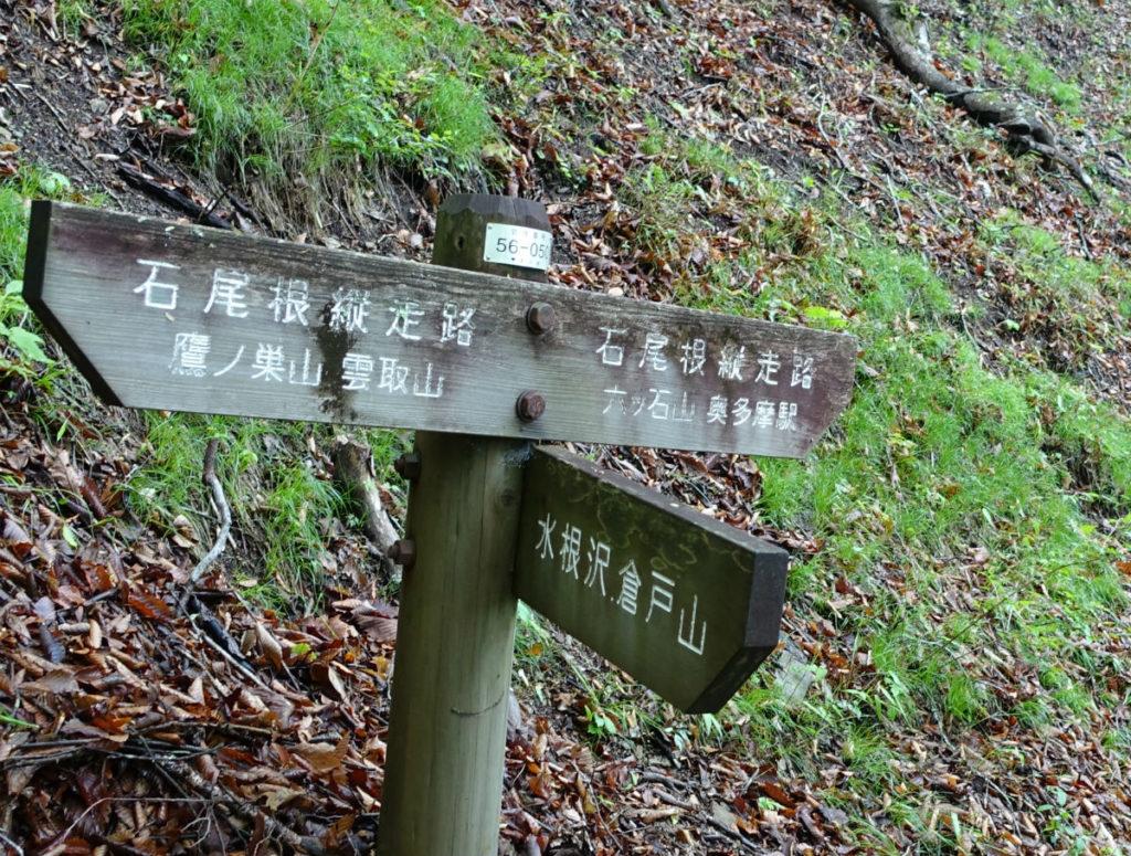 東京 六ツ石山登山 石尾根 鷹ノ巣山方面 水根沢方面 奥多摩方面三叉路