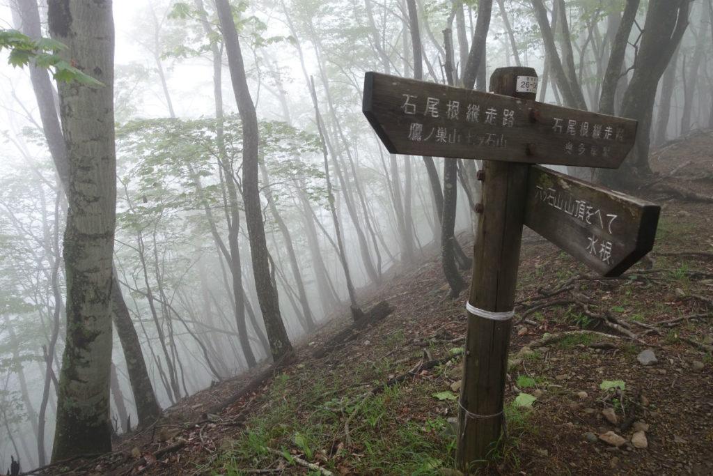東京 六ツ石山登山 石尾根 六ツ石山への分岐道標 霧発生