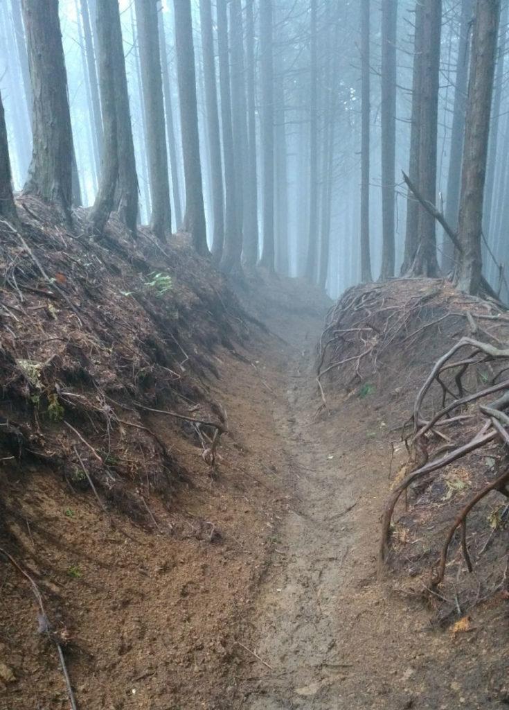東京 六ツ石山登山後 下山 雨後にて滑りやすい掘割の道