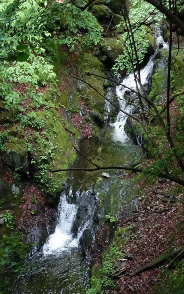 東京 六ツ石山 水根沢の小さな滝