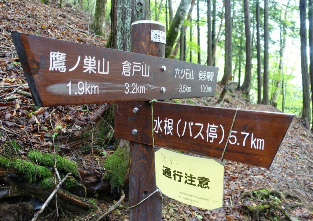 東京 六ツ石山 水根沢ルート終着 三叉路 左が鷹ノ巣山 右が六ツ石山