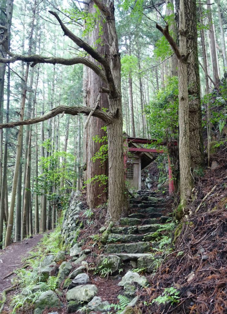 東京 六ツ石山登山後 石尾根下山途中の祠
