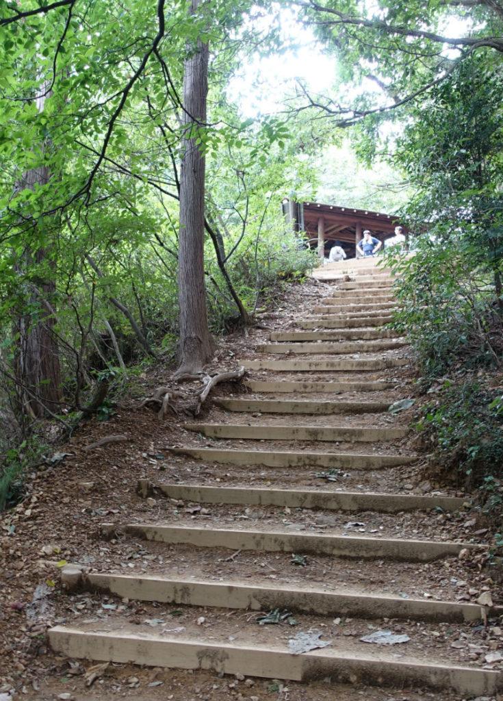 初秋高尾山06 稲荷山ルート 展望東屋手前の階段