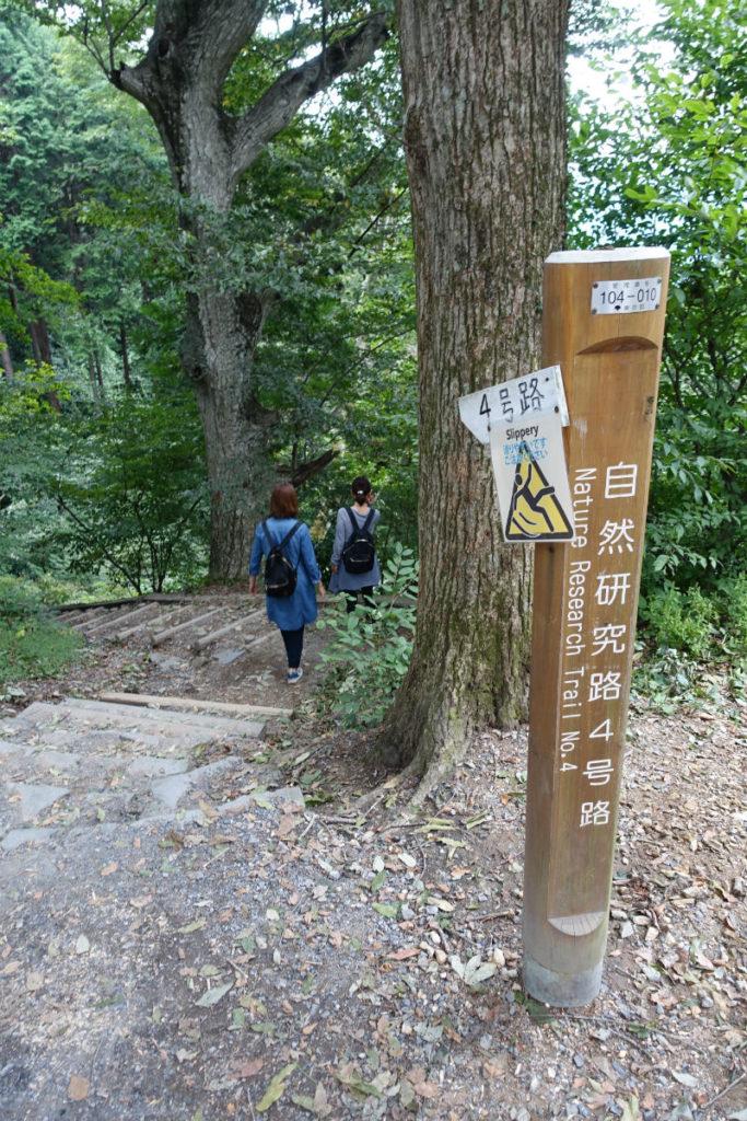 初秋高尾山24 四号路入口