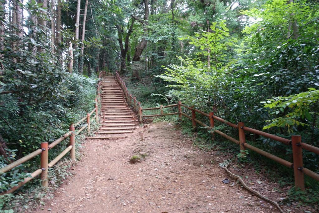初秋高尾山10 稲荷山ルート 整備された階段
